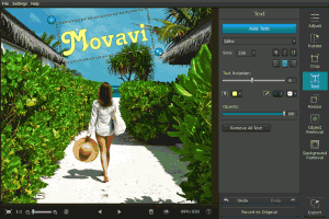 Movavi Photo Editor 4.4.0 - náhled
