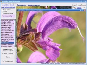 Botanika - Zelená příroda 4.0 - náhled