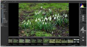 Nikon Capture NX-D 1.2.0 - náhled
