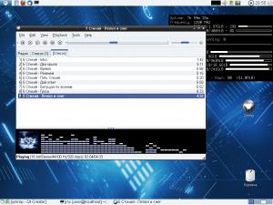 Qmmp 0.10.11 - náhled