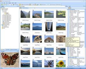Photo Manager 2008 Standard Version 1.0 Release 2 - náhled