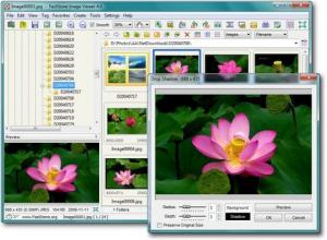 FastStone Image Viewer 5.6 - náhled