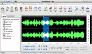 Total Recorder Editor 14.5.2 - náhled