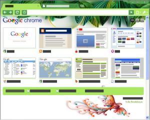 BlackHawk Web Browser 3.0.205 - náhled