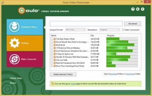 Houlo Video Downloader 8.65 - náhled