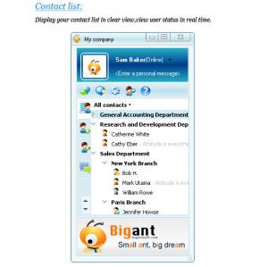 BigAnt Office Messenger 2.91 - náhled
