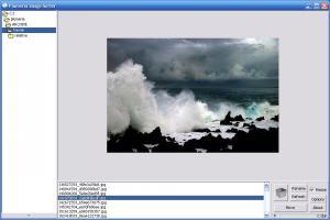 Plumeria Image Sorter 1.0.7 - náhled