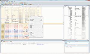 Free Network Analyzer 6.54 - náhled