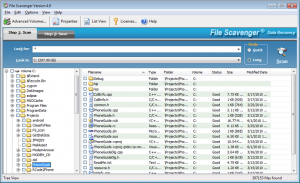 File Scavenger 5.3 - náhled