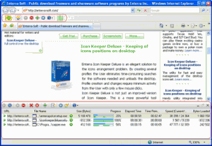 Enterra Download Manager 0.6.0.1 - náhled