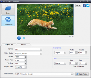 GIF to Flash Converter 4.0 - náhled