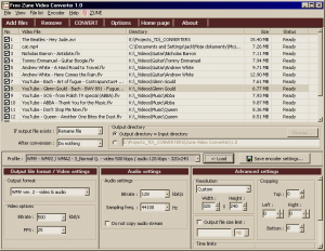 Free Zune Video Converter 1.1 - náhled