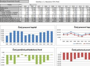 Finanční analýza FinAnalysis - náhled