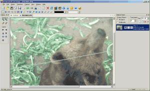 EximiousSoft Cool Image 3.30 - náhled