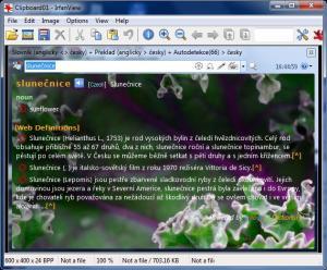 Dictionary .NET 6.4.5094 - náhled