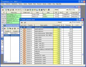 Účetní program AdmWin DE 2.73 - náhled