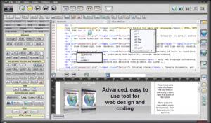 Roden Web Editor Pro X4 - náhled