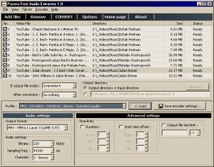 Pazera Free Audio Extractor 2.2 - náhled
