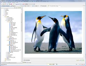 DBeaver 3.7.0. - náhled