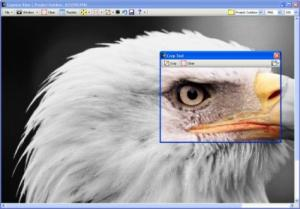Capture View 4.0 - náhled
