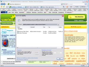 MS Internet Explorer 7.0 Final - náhled