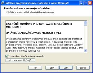Microsoft Download Manager 1.2 - náhled