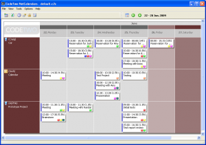 CodeTwo NetCalendars 2.1.1 - náhled