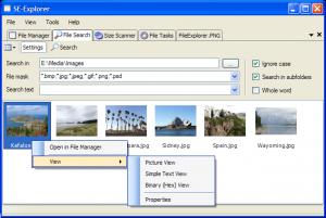SE-Explorer Portable 1.31.1 - náhled