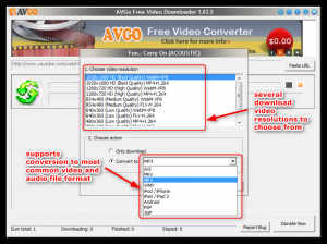 AVGO Free Video Downloader 1.8.8 - náhled
