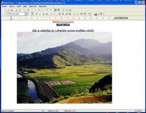 Práce s Mark Word - náhled