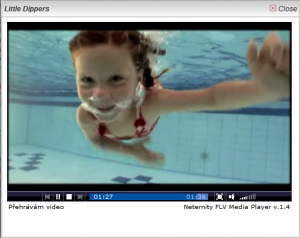Neternity Flash Media Player 1.7 - náhled