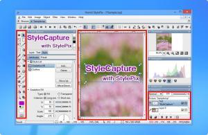 Hornil StyleCapture 1.2.1.0 - náhled
