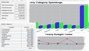 Budget Ace 1.5.1 - náhled