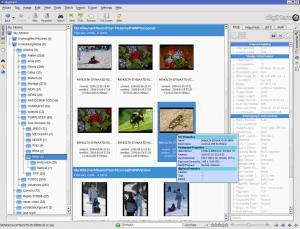 digiKam 7.1.0 - náhled
