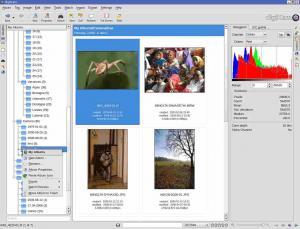digiKam 2.9.0 - náhled