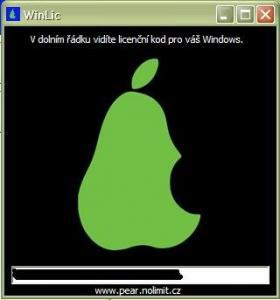 WinLic - náhled