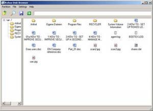 Rohos Mini Drive 2.9 - náhled