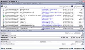 Panda Batch File Renamer 2.3 - náhled