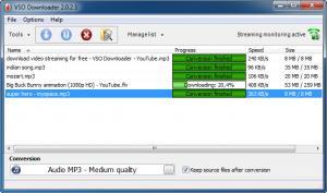 VSO Downloader 5.0.1.51 - náhled