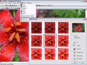 Editor digitálních fotografií 602Photo - náhled