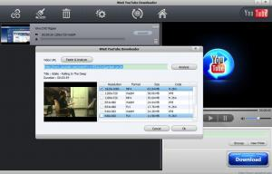 WinX YouTube Downloader 4.0.1 - náhled