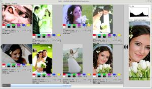 Multiple Image Processing Application 23.6.2010 - náhled