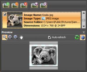 ImBatch 5.7.1 - náhled