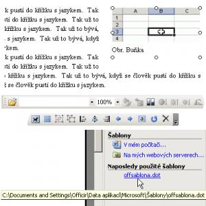 Ukázka PROffi Word - náhled