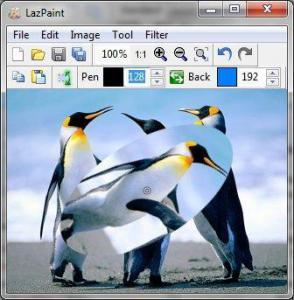 LazPaint 6.4.1 - náhled