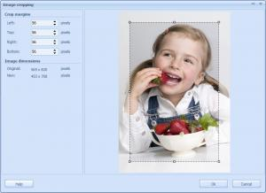 RonyaSoft Poster Printer 3.02.09 - náhled