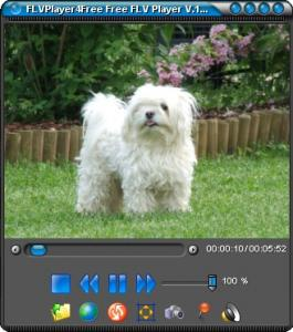 FLVPlayer4Free 3.8.0.0 - náhled