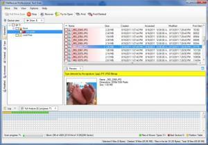 FileRescue Professional 4.10 - náhled