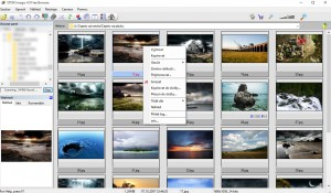 Imagic 4 Free Browser