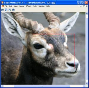 CEKLi PhotoLab 0.4.0 - náhled